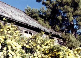 Old Pioneer House